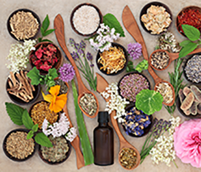 flowers and herbs